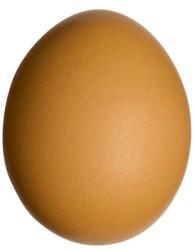 Jajko - zdrowe źródło białka