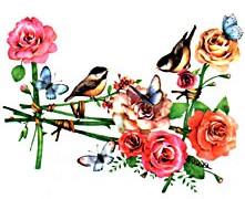 Róże i ptaki - TransFormacja. Hipnoza dla każdego